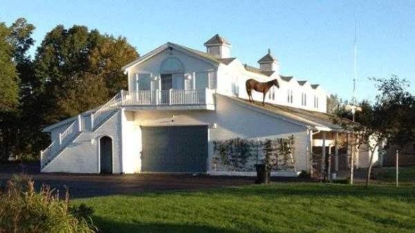 лошадь на крыше