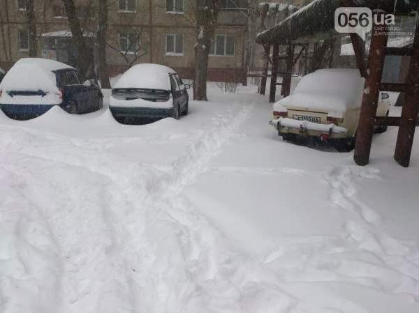снег в днепропетровске 28 января 2014. 3