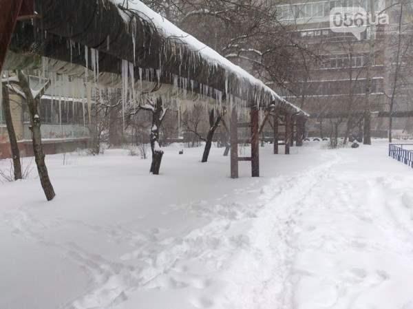 снег в днепропетровске 28 января 2014. 8