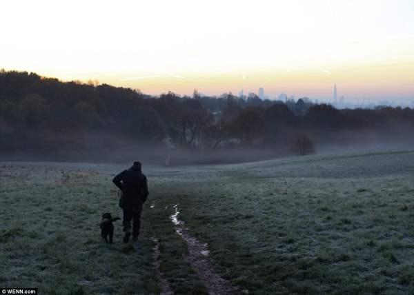 Мужчина выгуливает собаку в Хэмпстед-Хит