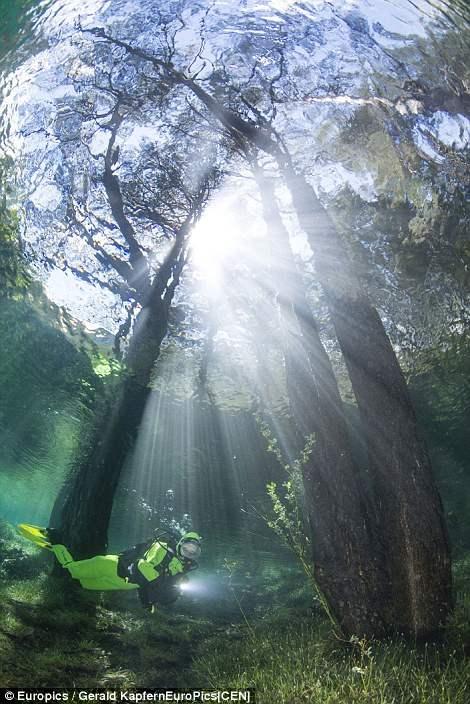 Впечатляющие снимки показывают затопленный Австрийский парк