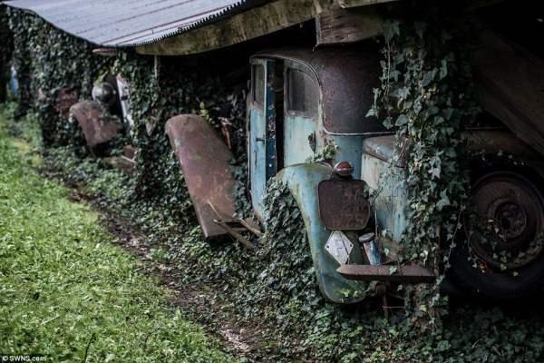 Время нещадно. Автомобили были собраны на ферме в период с 1950-х по 1970 - е годы