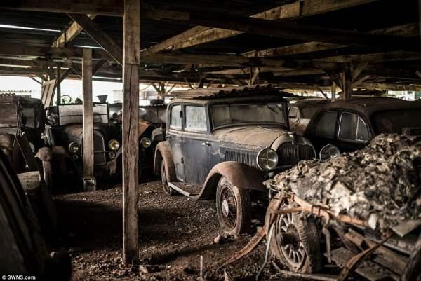 Автомобили были собраны на ферме Роджером Байлоном. Он их реставрировал и хотел сделать музей.
