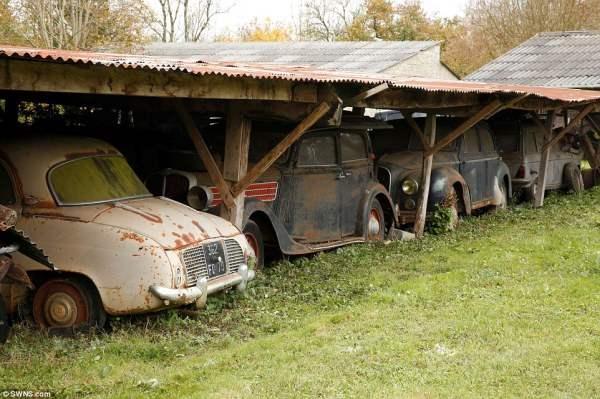 Внуки Байлона не имели ни малейшего представления, что на ферме целый склад дорогих автомобилей.