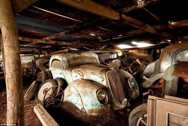 Автомобили были припаркованы на ферме в 1950-х