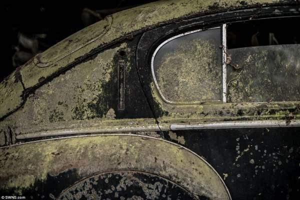 Многие авто покрыты мхом,плесенью и ржавчиной.