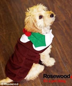 костюмы для собак20