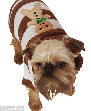 костюмы для собак21