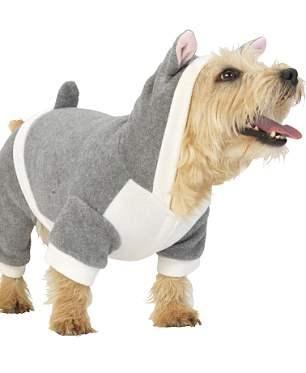 костюмы для собак26