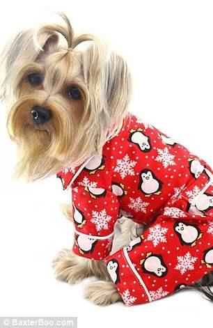 костюмы для собак6
