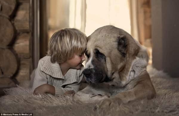 Мальчик и собака на уютном ковре
