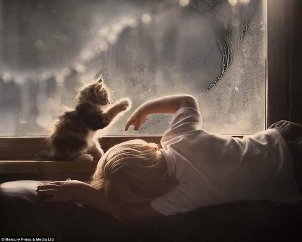 Мальчик и котенок рисуют на запотевшем стекле