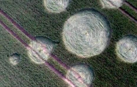 В Германии 18 мая 2015 года на поле появились круги