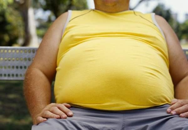 Шум является причиной ожирения