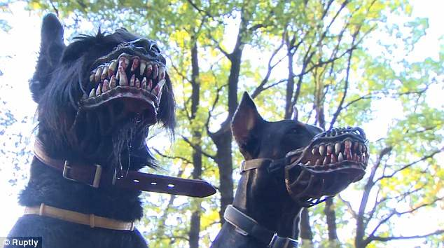 Морда сделана из нетоксичного пластика и нейлона, безвредного для собаки.