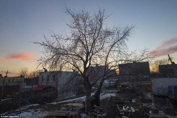 Вид на бедный район