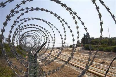 Эстония будет строить стену на границе с Россией