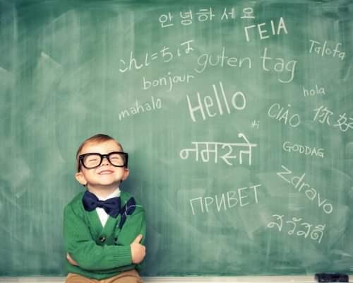 Программы Для Изучения Иностранных Языков Скачать Бесплатно