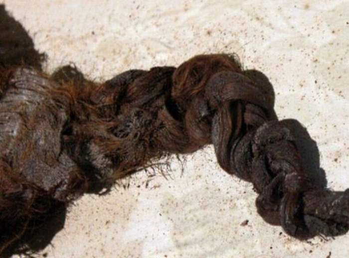 Найдена древняя реликвия — загадочные волосы.
