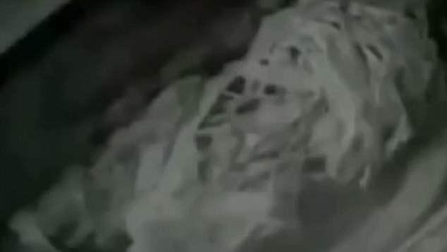 инопланетянин кгб (2)