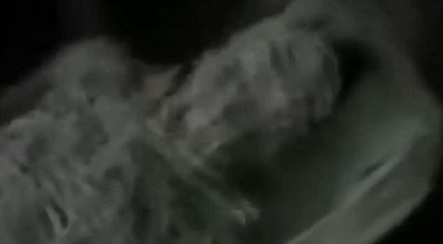 инопланетянин кгб