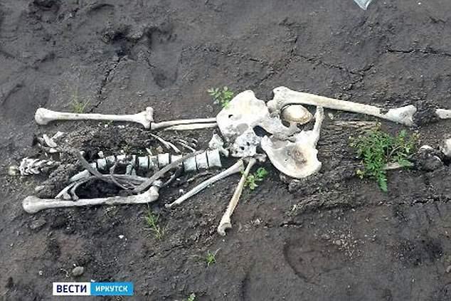 В Сибирском водохранилище нашли скелеты детей