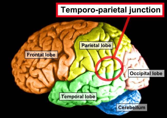 Ученые нашли в мозгу место, отвечающее за околосмертные переживания