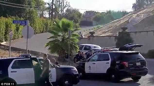 арест криса брауна