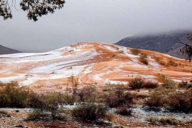 sneg-pustynya-saxara-2