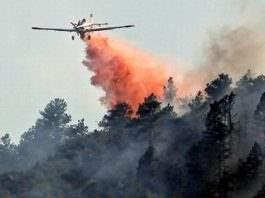 Генуя. Лесной пожар
