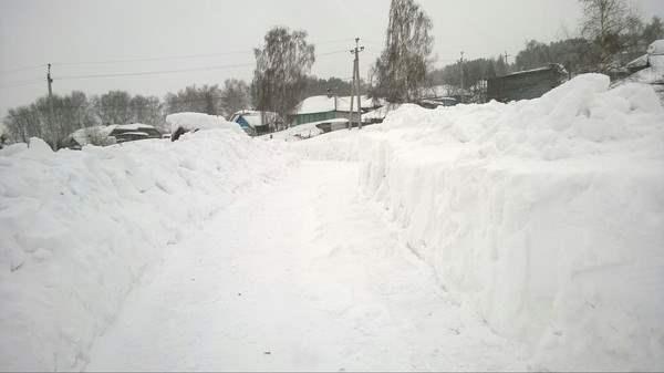 sibir-sneg-2