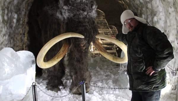 zhivoj-mamont