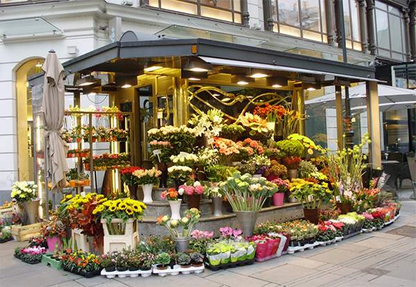 цветочные магазины фото