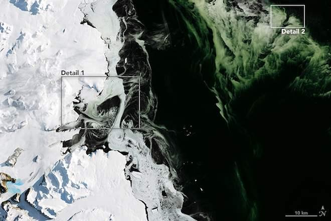 Зеленый лед