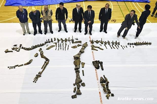 Динозавр Япония