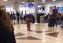 Голая в аэропорту