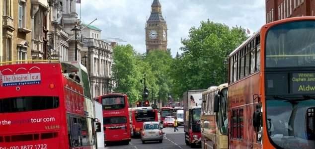 Лондон пчелы