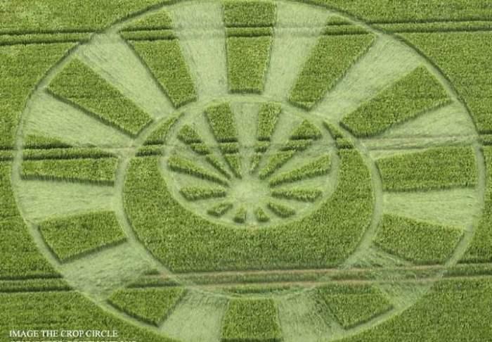 Уилтшир круг на поле