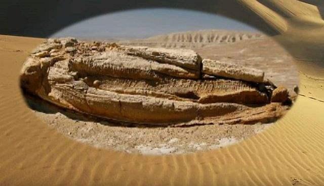 ископаемый кит перу