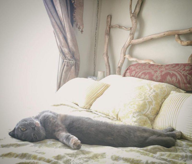 Греет постель