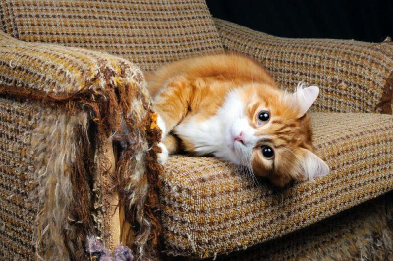 Проверка качества мебели
