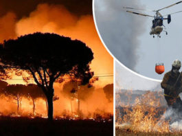 Doñana fire in Spain