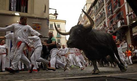 забег с быками в Испании