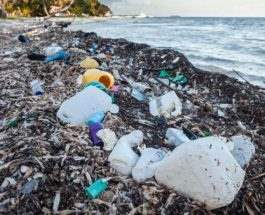 Кения пластик