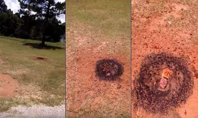 Метеорит задний двор