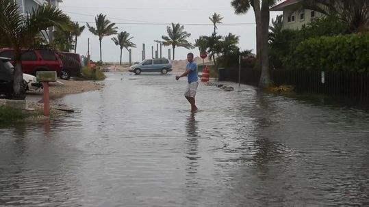 Флорида шторм
