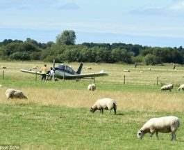 самолет аварийная посадка