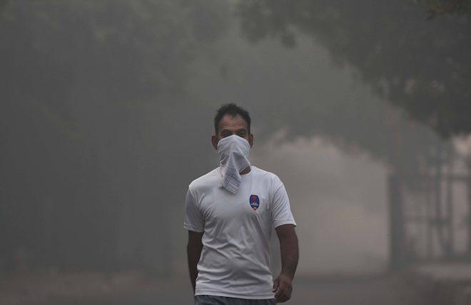 Индия экология