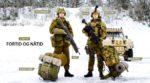 Норвегия Армия