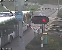 Польша автобус